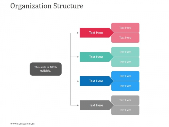 Organization Structure Ppt Powerpoint Presentation Infographics Icon