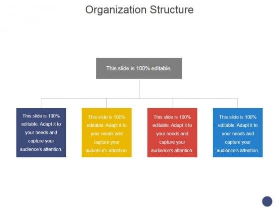 Organization Structure Ppt PowerPoint Presentation Professional Graphics Tutorials