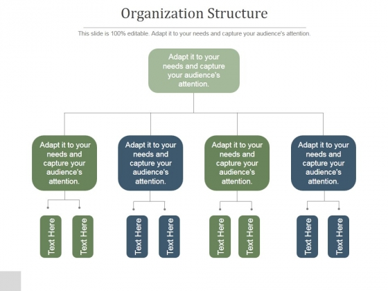 Organization Structure Ppt PowerPoint Presentation Rules