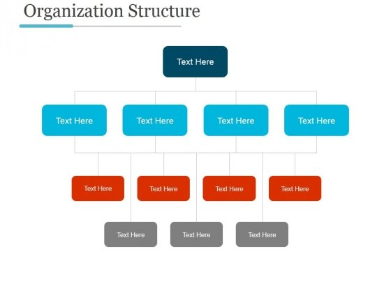 Organization Structure Ppt PowerPoint Presentation Styles