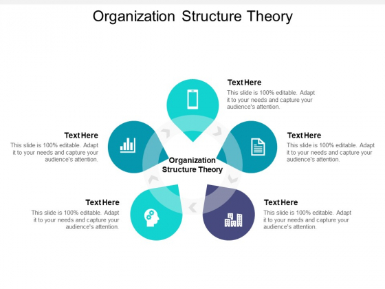 Organization Structure Theory Ppt PowerPoint Presentation Summary Show Cpb