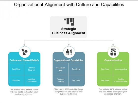 Organizational Alignment With Culture And Capabilities Ppt Powerpoint Presentation Styles Example