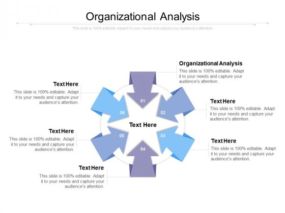 Organizational Analysis Ppt PowerPoint Presentation Summary Grid Cpb