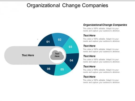 Organizational Change Companies Ppt Powerpoint Presentation Professional Information Cpb
