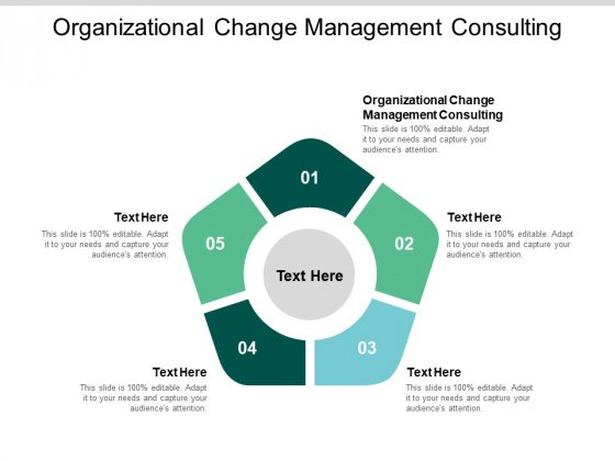 Organizational Change Management Consulting Ppt PowerPoint Presentation Professional Format Ideas Cpb