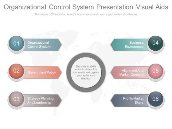 Organizational Control System Presentation Visual Aids
