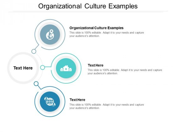 Organizational Culture Examples Ppt PowerPoint Presentation Summary Elements Cpb
