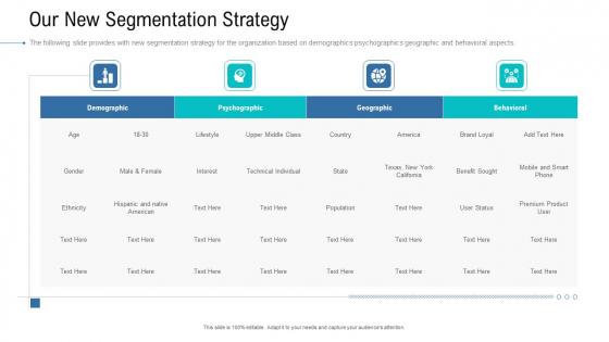 Organizational Development And Promotional Plan Our New Segmentation Strategy Brochure PDF