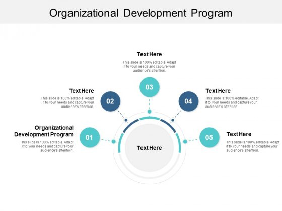Organizational Development Program Ppt PowerPoint Presentation Pictures Visual Aids Cpb