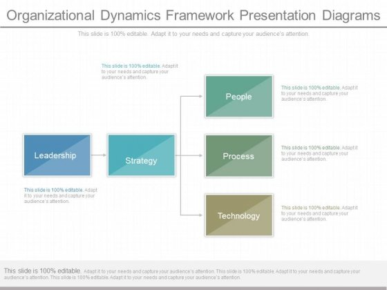 Organizational Dynamics Framework Presentation Diagrams