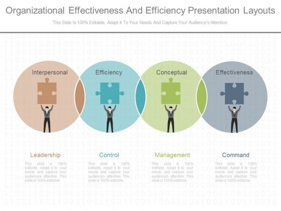 Organizational Effectiveness And Efficiency Presentation Layouts