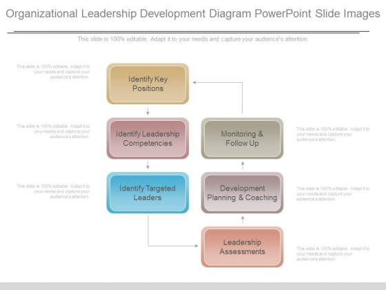 Organizational Leadership Development Diagram Powerpoint Slide Images
