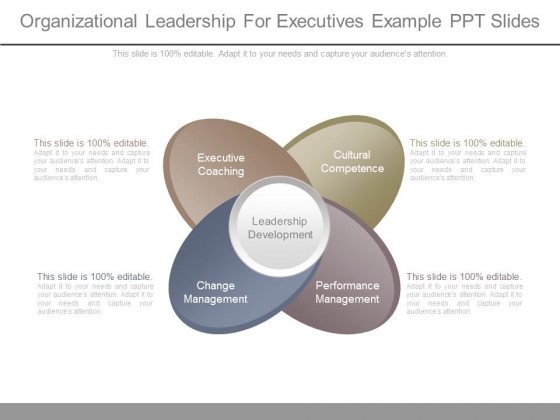 Organizational Leadership For Executives Example Ppt Slides