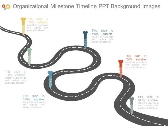 Organizational Milestone Timeline Ppt Background Images