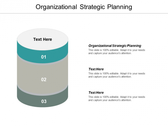 Organizational Strategic Planning Ppt PowerPoint Presentation Outline Graphics Pictures Cpb