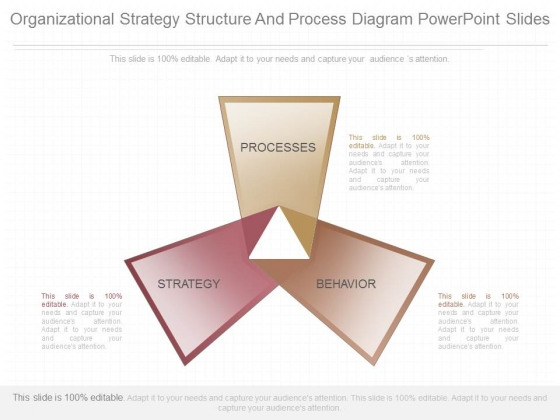 Organizational Strategy Structure And Process Diagram Powerpoint Slides