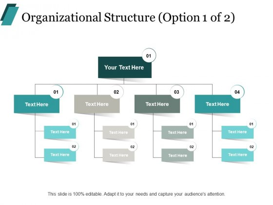 Organizational Structure Business Ppt PowerPoint Presentation Layouts Format