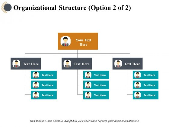 Organizational Structure Management Ppt PowerPoint Presentation Styles Design Templates
