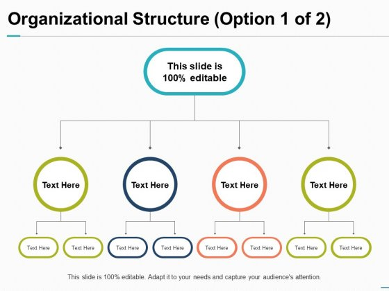 Organizational Structure Option Business Ppt PowerPoint Presentation Show