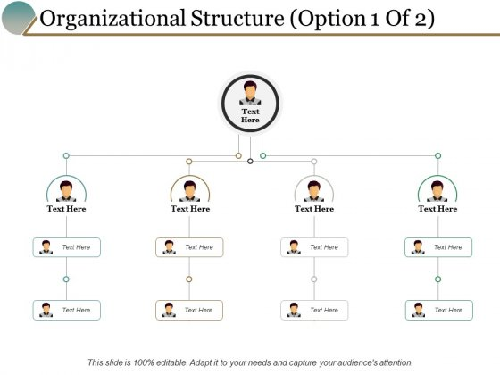 Organizational Structure Option Management Ppt PowerPoint Presentation Portfolio Themes