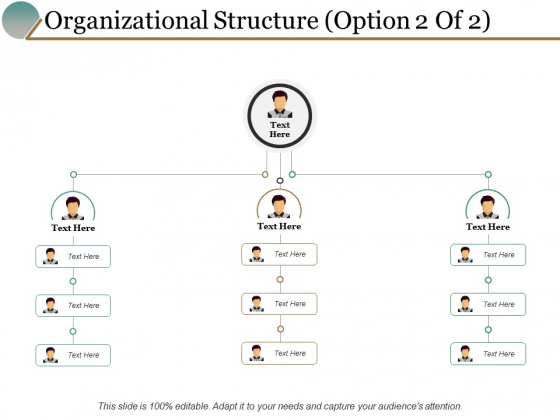 Organizational Structure Option Marketing Ppt PowerPoint Presentation Show Infographics