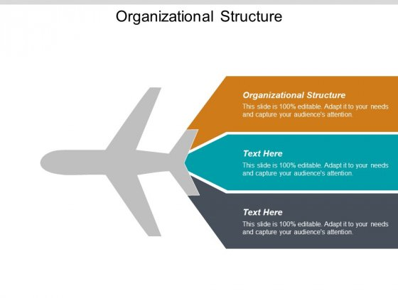 Organizational Structure Ppt PowerPoint Presentation Ideas Design Ideas Cpb