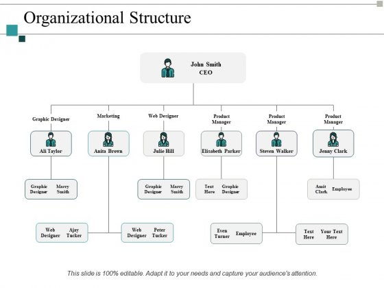Organizational Structure Ppt PowerPoint Presentation Pictures Maker