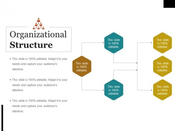 Organizational Structure Ppt PowerPoint Presentation Summary Brochure