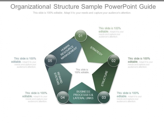Organizational Structure Sample Powerpoint Guide