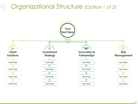 Organizational Structure Template 1 Ppt PowerPoint Presentation Infographics Files
