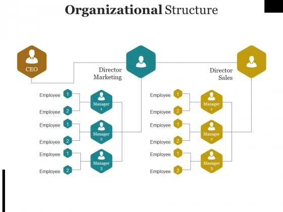 Organizational Structure Template Ppt PowerPoint Presentation File Graphics Tutorials