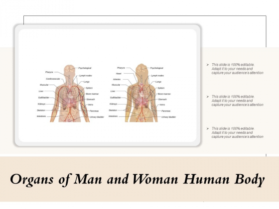 Organs Of Man And Woman Human Body Ppt PowerPoint Presentation Icon Ideas PDF