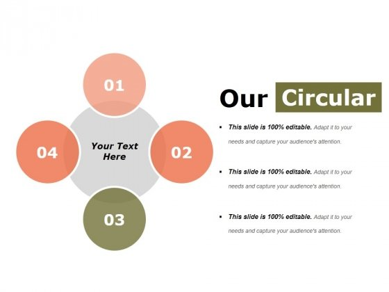 Our Circular Ppt PowerPoint Presentation Slides Display