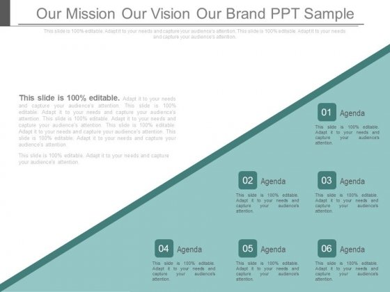 Our Mission Our Vision Our Brand Ppt Sample