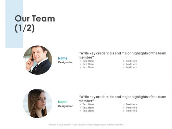 Our Team Business Strategy Ppt PowerPoint Presentation Professional Gallery