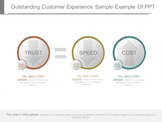 Outstanding Customer Experience Sample Example Of Ppt