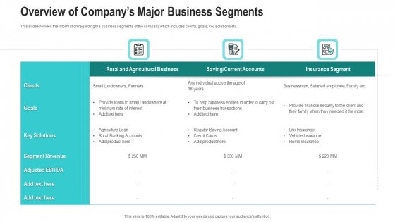 Overview Of Companys Major Business Segments Ppt Icon Infographics PDF