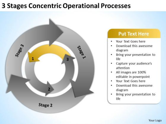 Operational Processes Ppt Business Plan Executive Template PowerPoint Templates