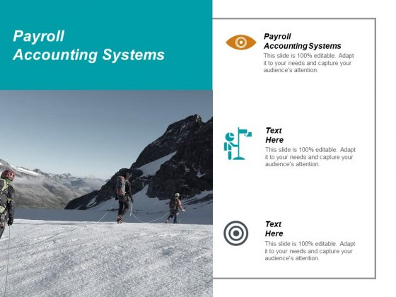 Payroll Accounting Systems Ppt PowerPoint Presentation Gallery Grid Cpb