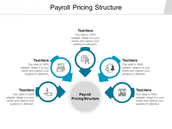 Payroll Pricing Structure Ppt PowerPoint Presentation Infographics Slides Cpb