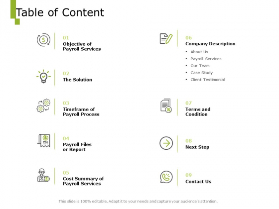 Paysheet Offshoring Company Table Of Content Ppt Pictures Example File PDF