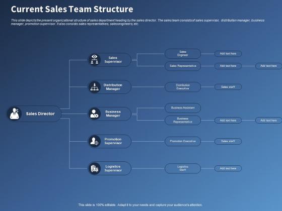 Performance Assessment Sales Initiative Report Current Sales Team Structure Ppt Professional Ideas PDF