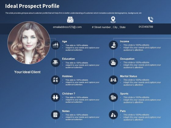 Performance Assessment Sales Initiative Report Ideal Prospect Profile Ppt Ideas Visual Aids PDF