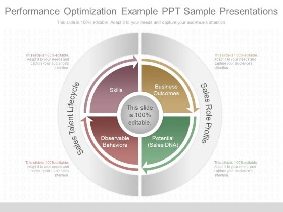 Performance Optimization Example Ppt Sample Presentations