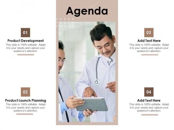 Pharmaceutical Marketing Strategies Agenda Summary PDF