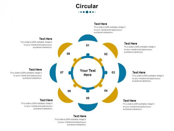 Phases Of Strategic Leadership Maturity Model Circular Demonstration PDF