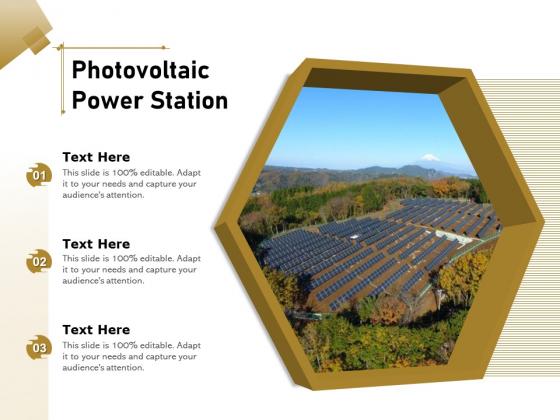 Photovoltaic Power Station Ppt PowerPoint Presentation Icon Inspiration PDF