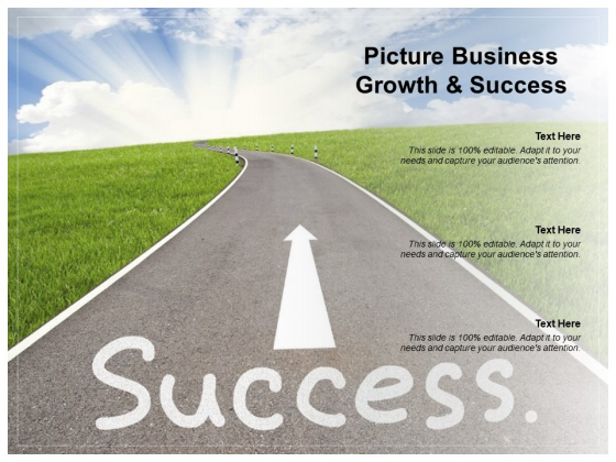 Picture Business Growth And Success Ppt PowerPoint Presentation Show Diagrams