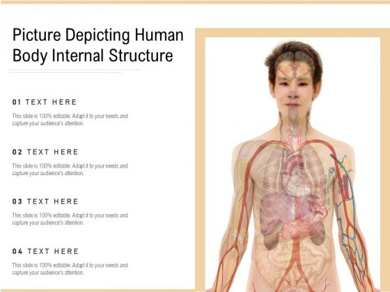 Picture Depicting Human Body Internal Structure Ppt PowerPoint Presentation File Structure PDF