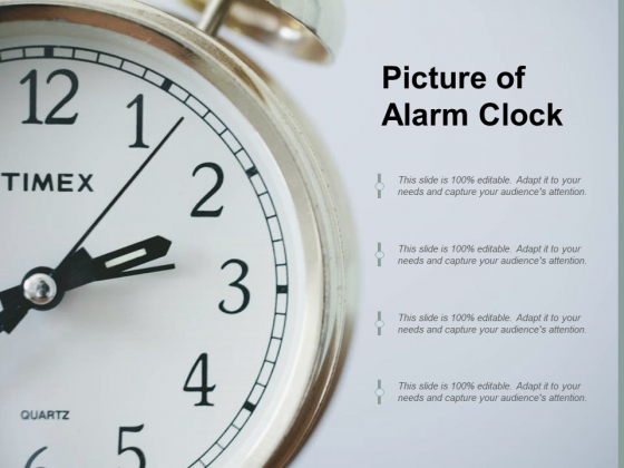 Picture Of Alarm Clock Ppt PowerPoint Presentation Professional Background Designs